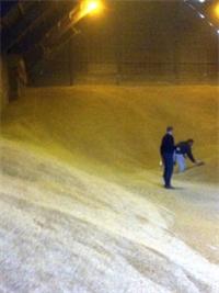 The Grain Guys
