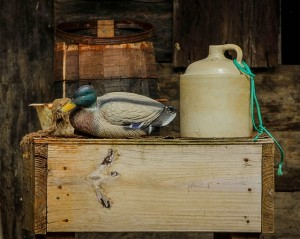 Moonshine: What is it and where is it going?